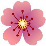 Logo, Dr. Yvonne Rutka @ www.seelennavigator.at